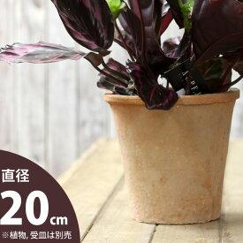 モスポット植木鉢(径20cm/高さ19cm)