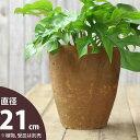 ナチュラル・アンティーク風 テラコッタ植木鉢トールtype:直径21cm×高さ24cm【モスポット ※植物は別売り】