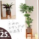 「太め」の木製スタンドで、カッコ良さUP!ファイバーセメントPOT(25cm)【送料無料・同梱不可】【ma】