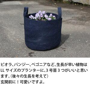 プランターをよりおしゃれに!ルーツポーチ(不織布の植木鉢)持ち手type(LL7ガロン)【幅35cm×高さ30cm】