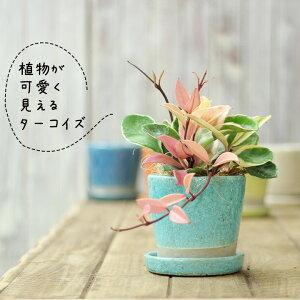 新感覚♪独特なカラーが植物を引き立たせる!貫入加工・JUNK風スクエア陶器鉢【植木鉢3.5〜4号向け白青赤黄】