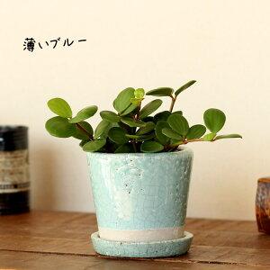 今まであまりなかった「color」が斬新で素敵!貫入加工・ポップ&JUNK風陶器鉢【植木鉢3〜3.5号向け】
