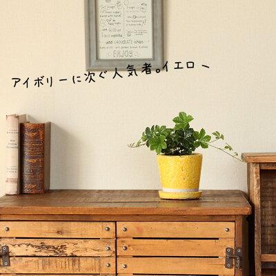 貫入加工・ポップ&JUNK風カラー陶器鉢Sサイズ【植木鉢2〜2.5号向けdu0ko0】