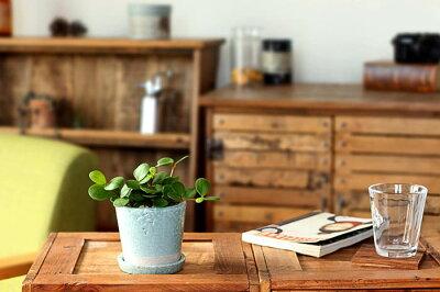 【植木鉢】JUNK風おしゃれツートンカラーの陶器鉢S