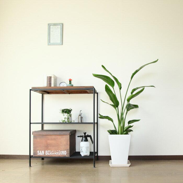 【送料無料】人気のスタイル・受皿付きです!スクエア縦長陶器鉢(6号〜7号鉢の植物向け)※植物は商品には含まれません