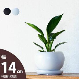 【おしゃれな植木鉢】ボール型・陶器鉢(14cm)