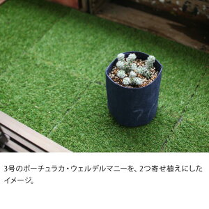 ルーツポーチ(不織布の植木鉢)SS【幅15cm×高さ19cm】