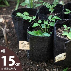 煙突型のJUNKな風合いがおしゃれな植木鉢サボテン、多肉植物にお勧めの陶器鉢【ミニミニサイズ】※植物は商品に含まれません。