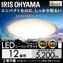 [10%OFFクーポン対象]LEDシーリングライト メタルサーキット クリアフレーム おしゃれ 12畳 CL12DL-5.1CF 送料無料 天…