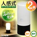【送料無料】【2個セット】電池式ガーデンセンサーライト ZSL-SEW アイリスオーヤマ【送料無料】