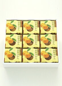田村みかんフルーツまるごとゼリーセット(250g×9個入り)ギフト お歳暮 お中元 贈り物 贈答 和歌山 手土産 日持ち 年賀