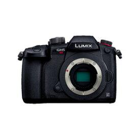 パナソニック デジタル一眼カメラ/ボディ DC-GH5S-K 目安在庫=△【10P03Dec16】