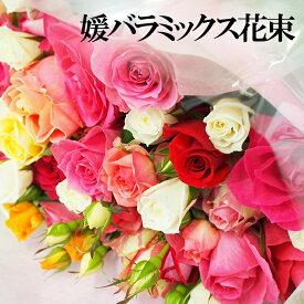 【20%OFFクーポン配布中!】(株)東予園芸農業協同組合直販所 媛バラミックス花束