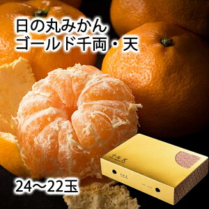 リベラル日の丸みかんゴールド千両・天特秀品・高糖度24〜22玉