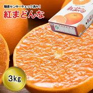 リベラル紅まどんな3kg○(マル)版