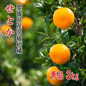 【予約販売・3月10日より発送開始】【日付指定不可】リベラル 愛媛県産高級柑橘せとか 秀品3kg サイズおまかせL〜4Lサイズ マツコの知らない世界で紹介された柑橘です!