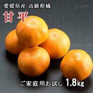 リベラル愛媛県産甘平(かんぺい)ご家庭用1.8kg