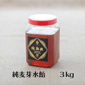 【20%OFFクーポン配布中!】金沢製菓 純麦芽水飴
