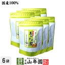 【国産】たまねぎ皮茶 玉ねぎの皮茶 2g×30パック×6袋セット 送料無料 ティーバッグ たまねぎ茶 玉ねぎの皮 たまねぎ…