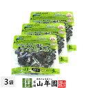 おしゃぶり芽かぶ 95g×3袋セット送料無料 そのまま食べられるめかぶです おしゃぶりめかぶ めかぶ めひび 芽かぶ茶 …