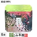 Sakura wakoucha 06p