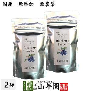 【国産】 ブルーベリー粉末 50g×2袋 無農薬で栽培されたブルーベリーを粉末に 無添加 果実本来の甘みをアイス ヨーグルトに 健康 送料無料 国産 緑茶 ダイエット ギフト プレゼント 母の日