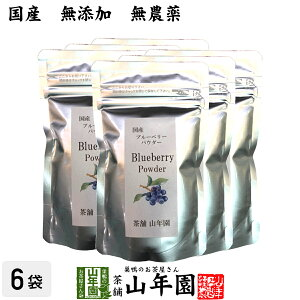 【国産】 ブルーベリー粉末 50g×6袋 無農薬で栽培されたブルーベリーを粉末に 無添加 果実本来の甘みをアイス ヨーグルトに 健康 送料無料 国産 緑茶 ダイエット ギフト プレゼント お歳暮