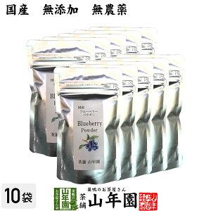 【国産】 ブルーベリー粉末 50g×10袋 無農薬で栽培されたブルーベリーを粉末に 無添加 果実本来の甘みをアイス ヨーグルトに 健康 送料無料 国産 緑茶 ダイエット ギフト プレゼント 母の日