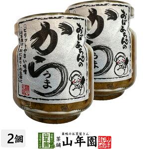おばあちゃんのからうま 100g×2個セットピリットやさい味噌 お茶漬け・おにぎり・お豆腐に Made in Japan 送料無料 国産 緑茶 ダイエット ギフト プレゼント 父の日 お中元 プチギフト お茶 内祝