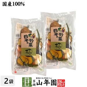 【国産100%】野菜チップス 日本の野菜・極 50g×2袋送料無料 徳島鳴門産の塩と種子島産の砂糖、国産の野菜を使用して仕上げました 野菜チップ 健康食品 内祝い 贈り物 お土産 ギフト 食物繊