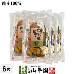 【国産100%】野菜チップス 日本の野菜・極 50g×6袋送料無料 徳島鳴門産の塩と種子島産の砂糖、国産の野菜を使用して仕上げました 野菜チップ 健康食品 内祝い 贈り物 お土産 ギフト 食物繊