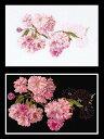 【テア・グーベルヌール】 刺繍キット 512-A7 Prunus 八重桜 【あす楽】【HLS_DU】【送料無料】 【RCP】