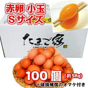 赤卵 小玉Sサイズ 100個 約5Kg 送料無料 初産み卵 鶏卵 若鶏卵 九州産 生食用 お中元 お歳暮 普段使い 破損補償入り