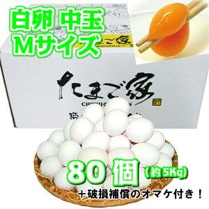 白卵 Mサイズ 80個入り 約5Kg 送料無料 鶏卵 お得 九州産 生食用 お中元 お歳暮 破損補償入り