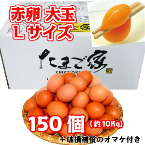赤卵 150個以上 Lサイズ 大玉 約10Kg 送料無料  鶏卵 お得 九州産 生食用 お中元 お歳暮 破損補償入り