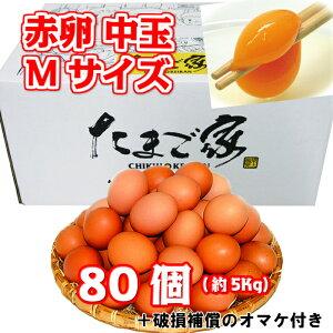 赤卵 中玉Mサイズ 80個 約5Kg 送料無料 鶏卵 若鶏卵 九州産 生食用 お中元 お歳暮 普段使い 破損補償入り