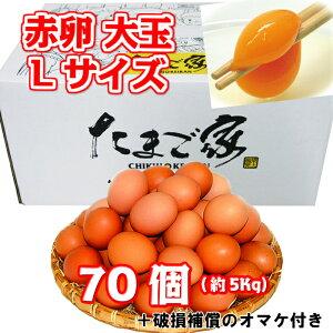 赤卵 大玉Lサイズ 70個 約5Kg 送料無料 鶏卵 若鶏卵 九州産 生食用 お中元 お歳暮 普段使い 破損補償入り