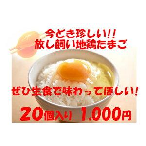 卵 たまご 産地直送 放し飼い卵 20個入 生食用卵 九州産福岡県産 自然卵