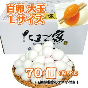 白卵 Lサイズ 70個入り 約5Kg 送料無料 鶏卵 お得 九州産 生食用 お中元 お歳暮 破損補償入り