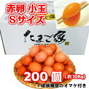 赤卵 200個以上 Sサイズ 小玉 約10Kg 送料無料 若鶏卵 初産み卵 鶏卵 お得 九州産 生食用 お中元 お歳暮…