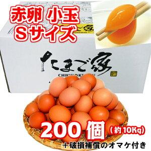 赤卵 200個以上 Sサイズ 小玉 約10Kg 送料無料 若鶏卵 初産み卵 鶏卵 お得 九州産 生食用 お中元 お歳暮 破損補償入り
