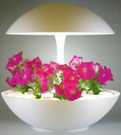 Akarina01RN 灯菜 オリンピア照明 家庭用水耕栽培器 タイマー タッチスイッチ機能 OMA01RN0J