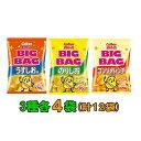 【送料無料(沖縄・離島除く)】カルビー ポテトチップス BIGBAG(ビック・ビッグ) 170g 3種各4袋セット(計12袋) う…