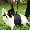 カラフルドッグリフトハーネスMサイズ(老犬介護用 歩行補助ハーネス)【メール便送料無料/代引不可】 ハギーバディー…