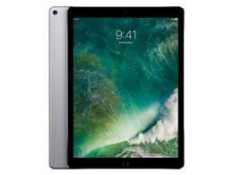 アップル / APPLE iPad Pro 12.9インチ Wi-Fi 256GB MP6G2J/A [スペースグレイ] 【タブレットPC】【送料無料】
