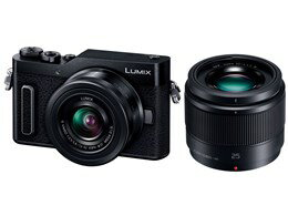 Panasonic / パナソニック LUMIX DC-GF90W-K ダブルレンズキット [ブラック] 【デジタル一眼カメラ】【送料無料】