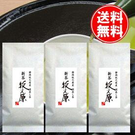 送料無料 お中元 2021年度 静岡坂部産 深蒸し茶 牧之原100g3本パック