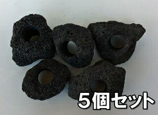 【1個=200円!】 【5個セット】黒い溶岩石 (穴あき)溶岩でできたフラワーポット(溶岩鉢)【もう1個サービス中!】※形状お任せになります。