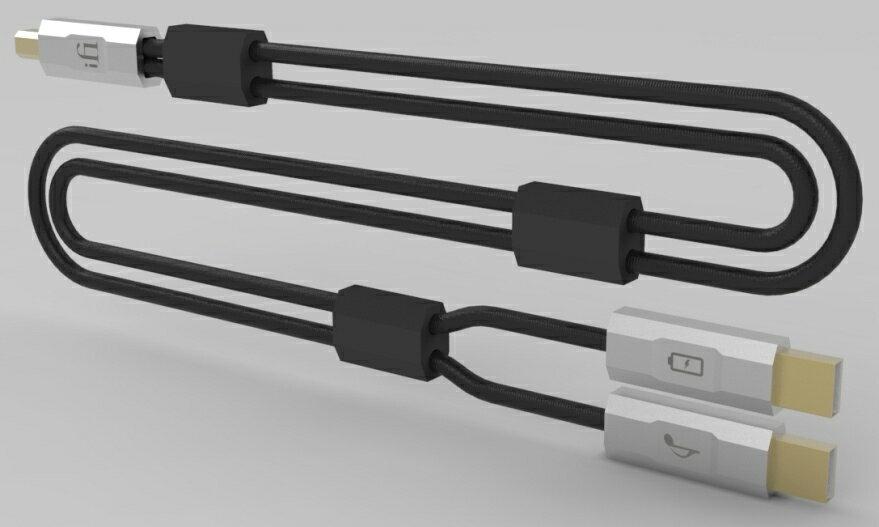【お取り寄せ(代引き不可)】iFI-Audio アイファイオーディオ GEMINI デュアルヘッドUSBケーブル 1.5m【送料無料】