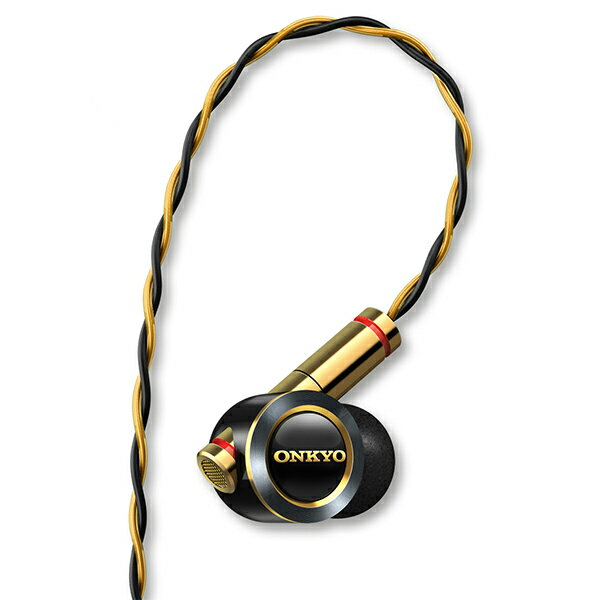 ONKYO オンキヨー E900MB ブラック ハイブリッド型高音質 イヤホン / カナル型 イヤホン イヤフォン【送料無料】